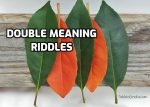 Double meaning riddles with answers