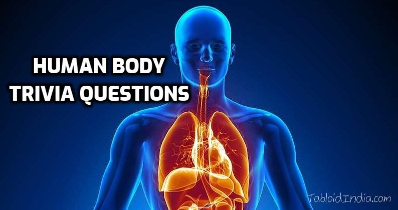 Human Body Trivia Questions for All Humans