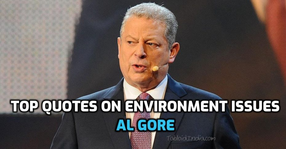 Environment Quotes by Al Gore