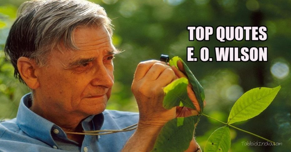 Famous Quotes on Nature by E. O. Wilson