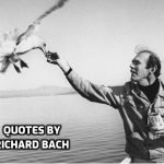 36 Best Quotes by Writer Richard Bach