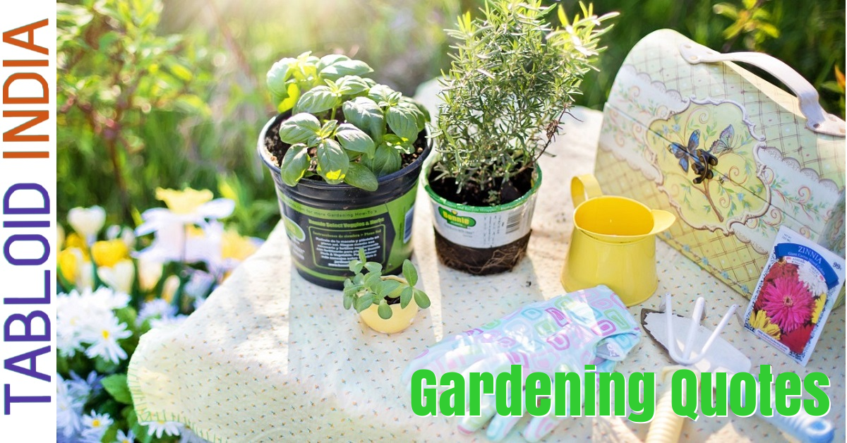 82 Wise Gardening Quotes by Famous People