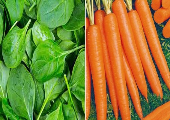 Carrot and Spinach
