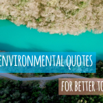 200+ Environmental Quotes for Better Tomorrow