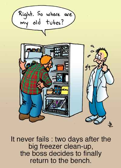 Funny Refrigerator Cleaning Quotes